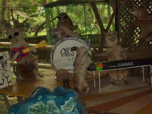 Funny Stuffed Animals Rock Band at Daks and Gams